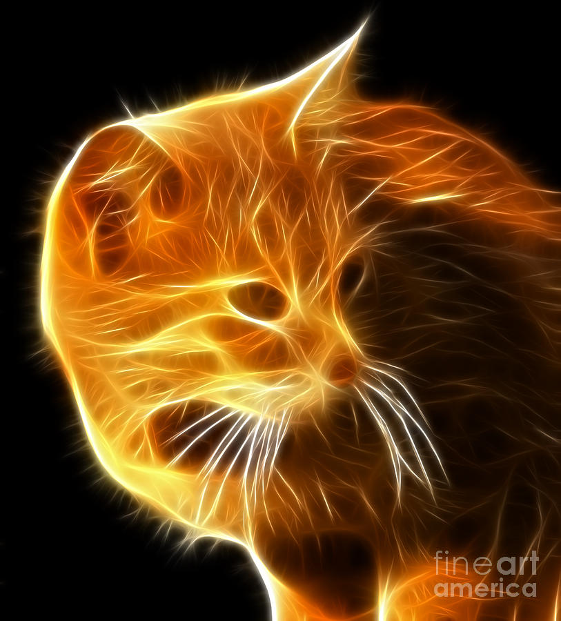 Cat Mixed Media - Amazing Cat Portrait by Pamela Johnson