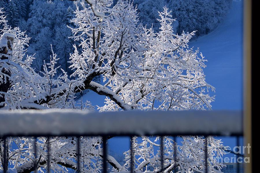 Amazing - Winterwonderland in Switzerland by Susanne Van Hulst