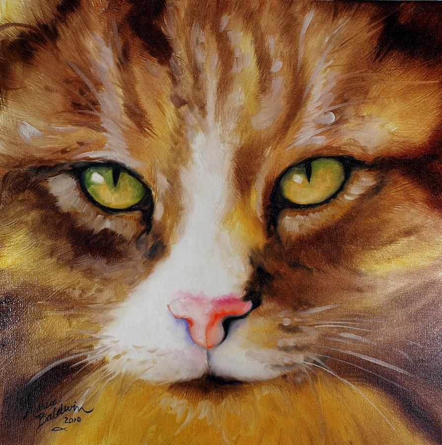 Amber eyes sweet kitty painting by marcia baldwin for Cat paintings on canvas