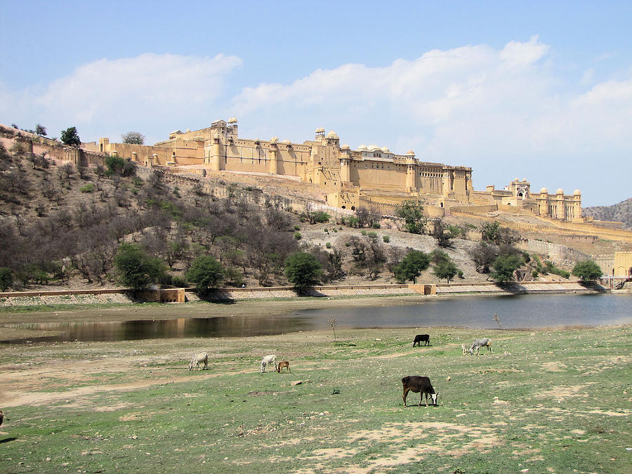 Amber Photograph - Amber Fort by Elbert Shackelford