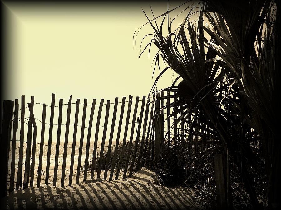 Shadows Photograph - Amber Shadows by Cheryl Viar