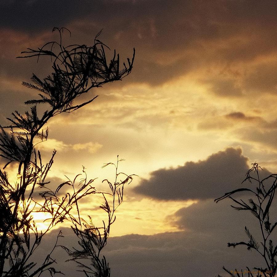 Glenn Mccarthy Photograph - Amber Sky by Glenn McCarthy Art and Photography