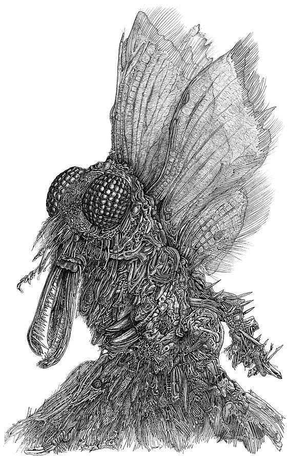 Ambiton Drawing by Joe MacGown