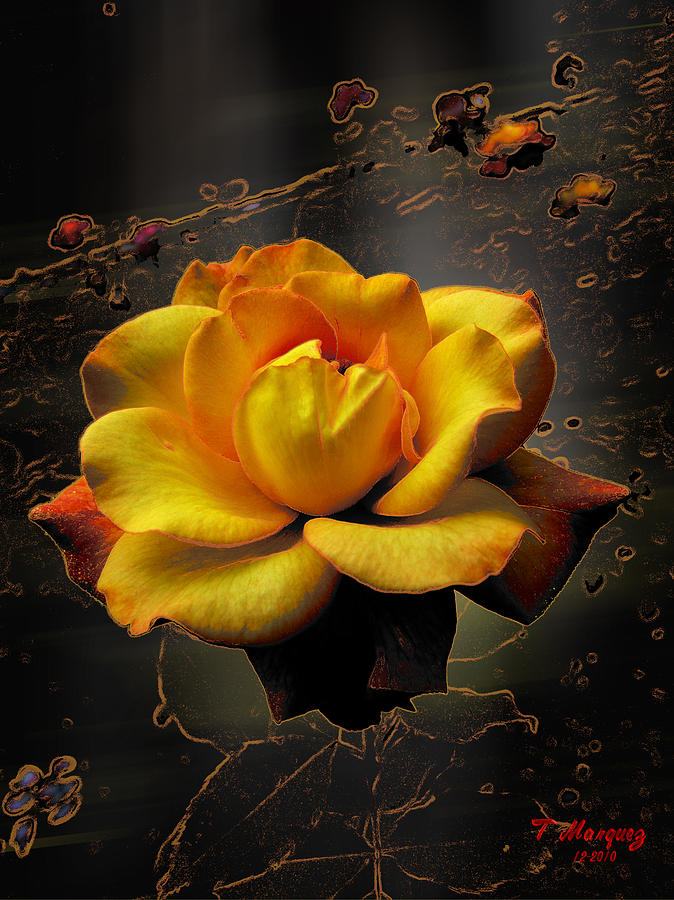 Flower Photograph - Ambrosia by Tony Marquez