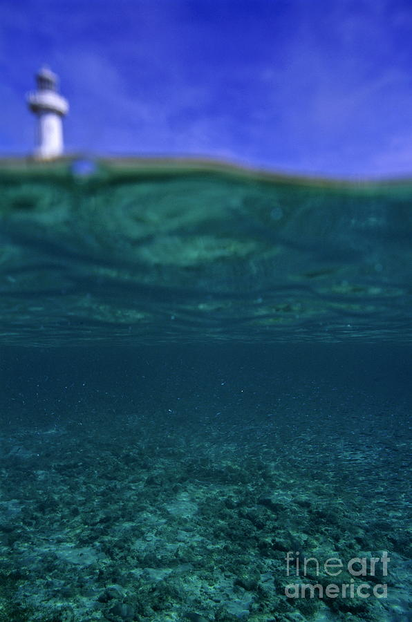 Assistance Photograph - Amedee Lighthouse Island Seen From Underwater by Sami Sarkis