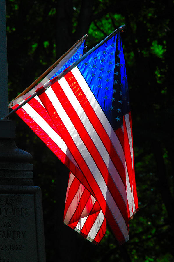Flags Photograph - America In Contrast by Emily Stauring