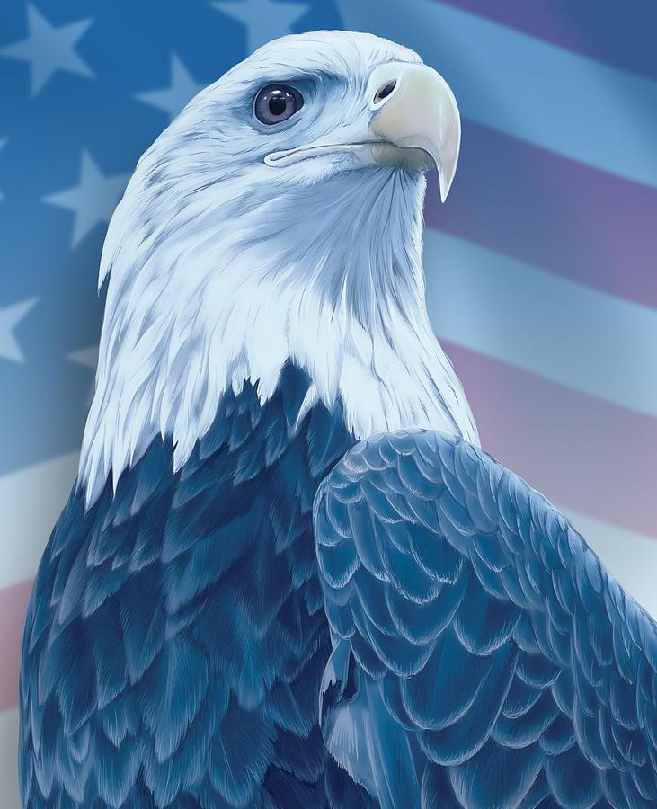 American Bald Eagle Digital Art by Nick Freemon