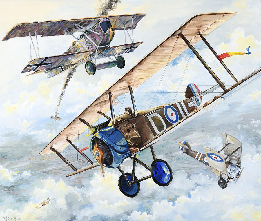 Aircraft Painting - American Camel by Charles Taylor