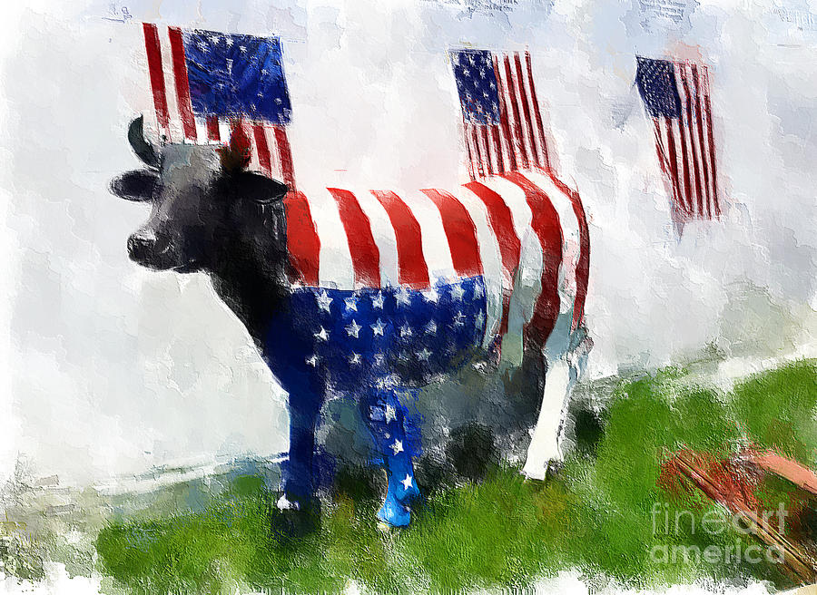 American Cow Photograph