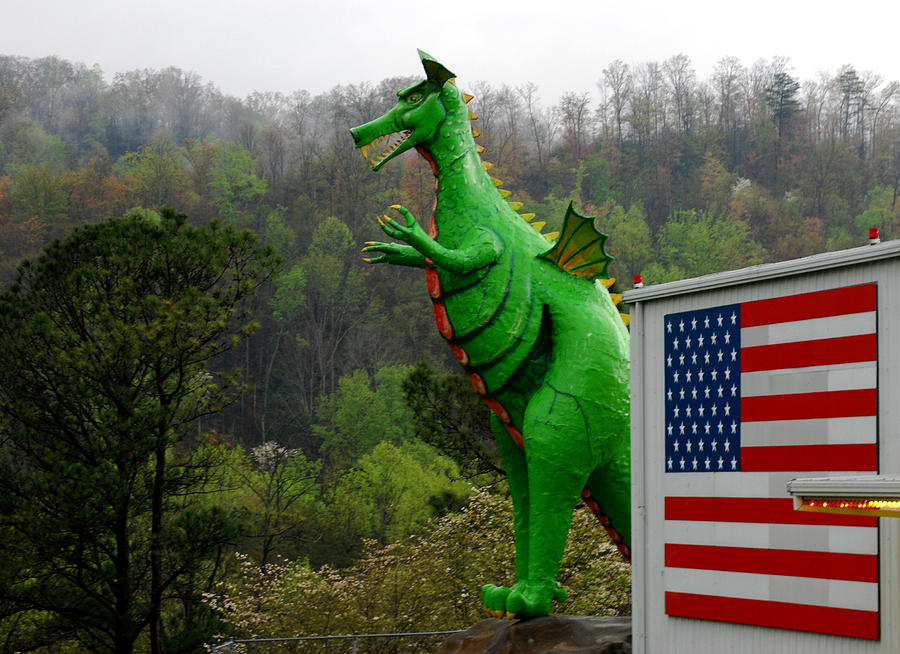 Dragon Photograph - American Dragon  by Michelle  BarlondSmith