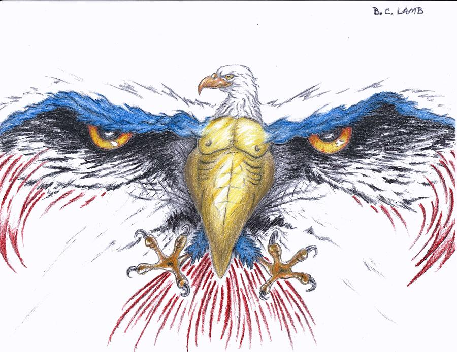bald eagle drawings fine art america