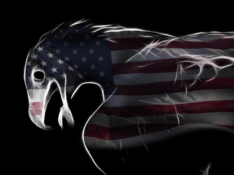 Symbol Photograph - American Eagle by Melanie Viola