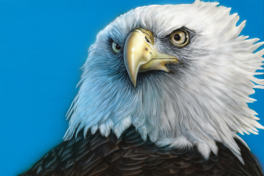 Bald Eagle Painting - American Eagle by Wayne Pruse