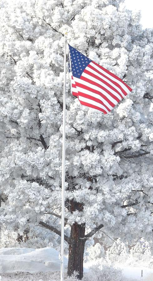 Flag Photograph - American Flag Snow  by Phyllis Britton