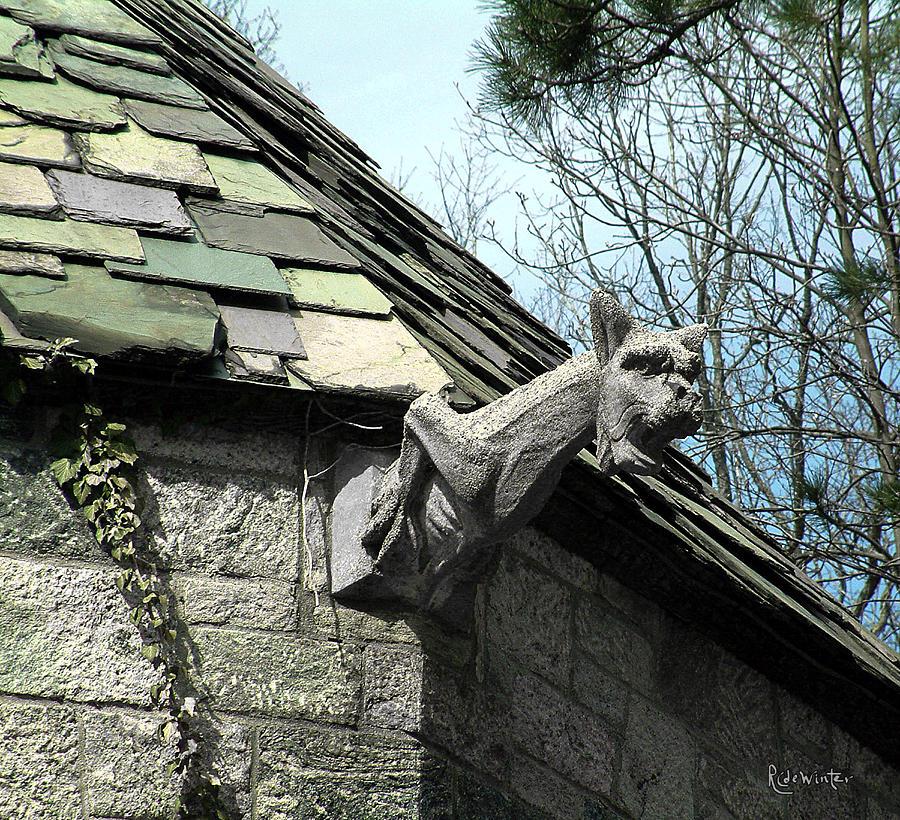 Architecture Photograph - American Gargoyle by RC DeWinter