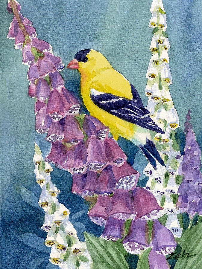 American Goldfinch and Foxgloves by Janet Zeh