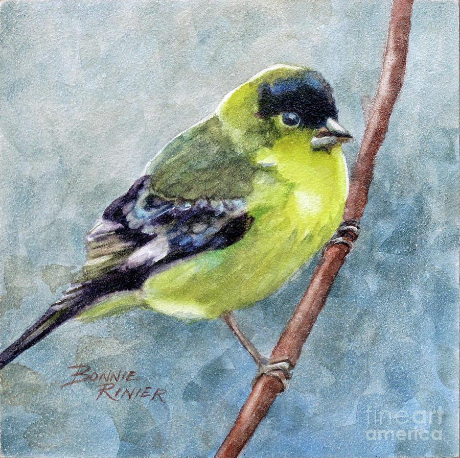 Bird Painting - American Goldfinch by Bonnie Rinier
