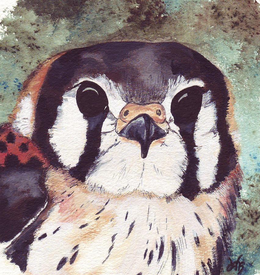 Raptor Painting - American Kestrel by Debra Sandstrom