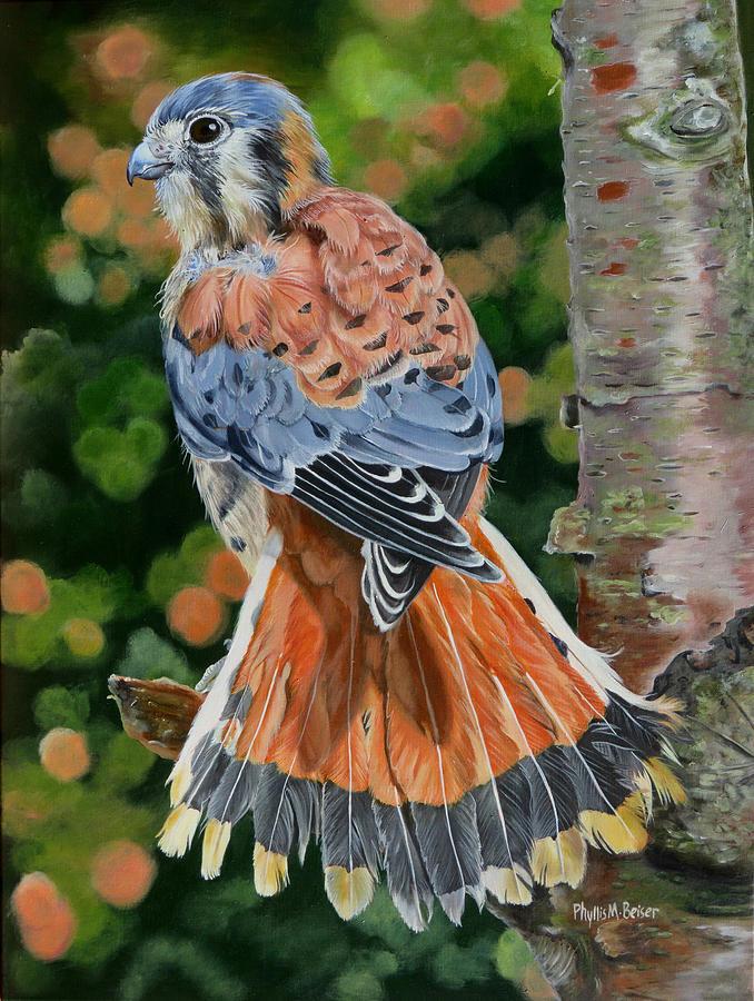 Bird Painting - American Kestrel In My Garden by Phyllis Beiser