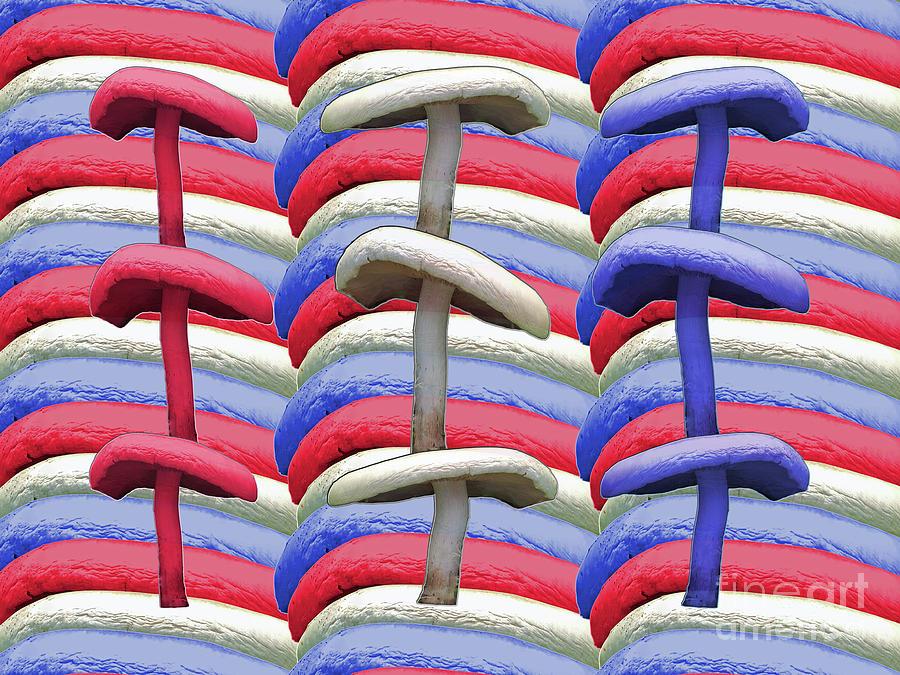 American Photograph - American Mushrooms by Rockin Docks Deluxephotos