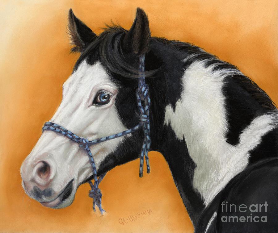 Animal Painting - American Paint Horse - Soft Pastel by Svetlana Ledneva-Schukina