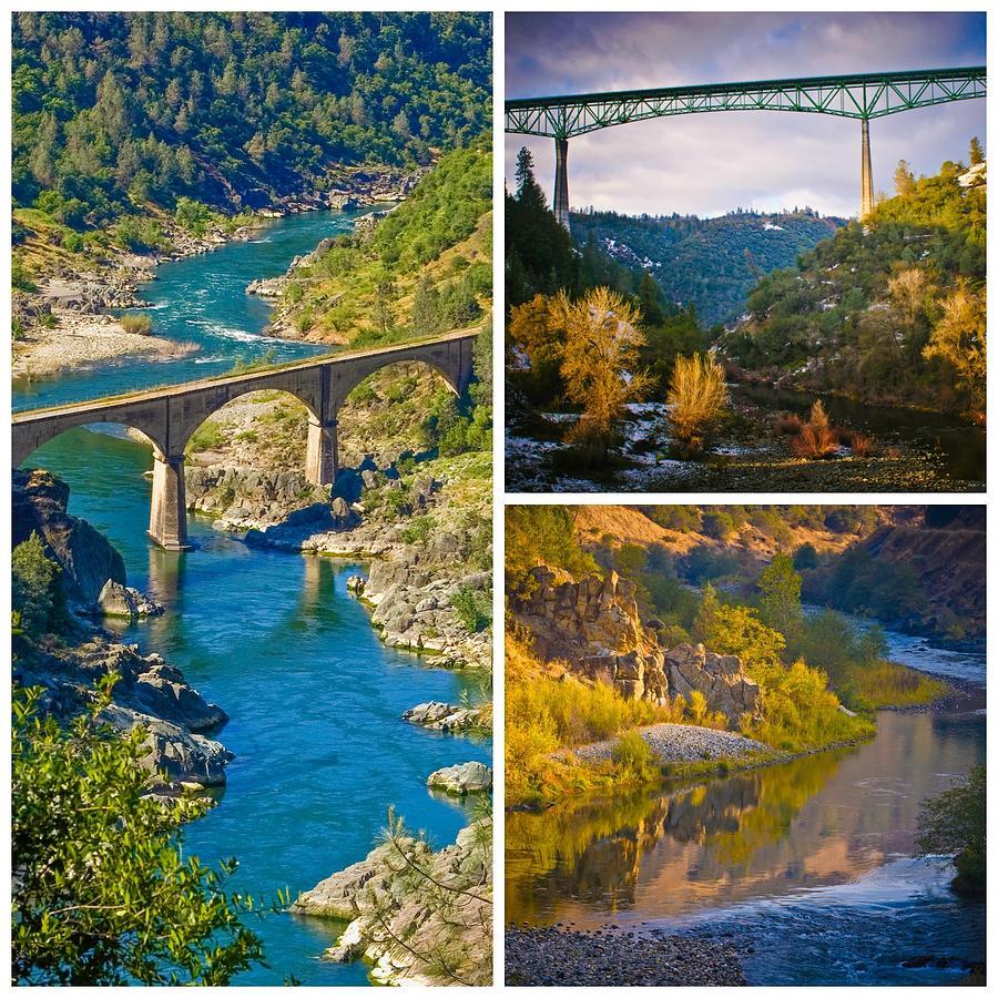 American River Triptych 3 by Sherri Meyer