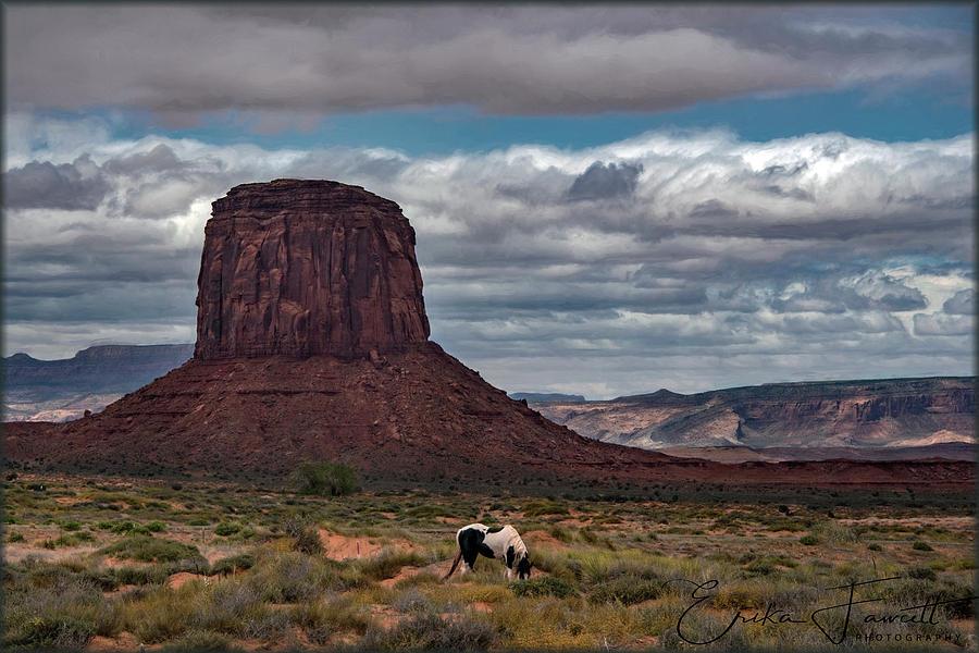 American Southwest by Erika Fawcett