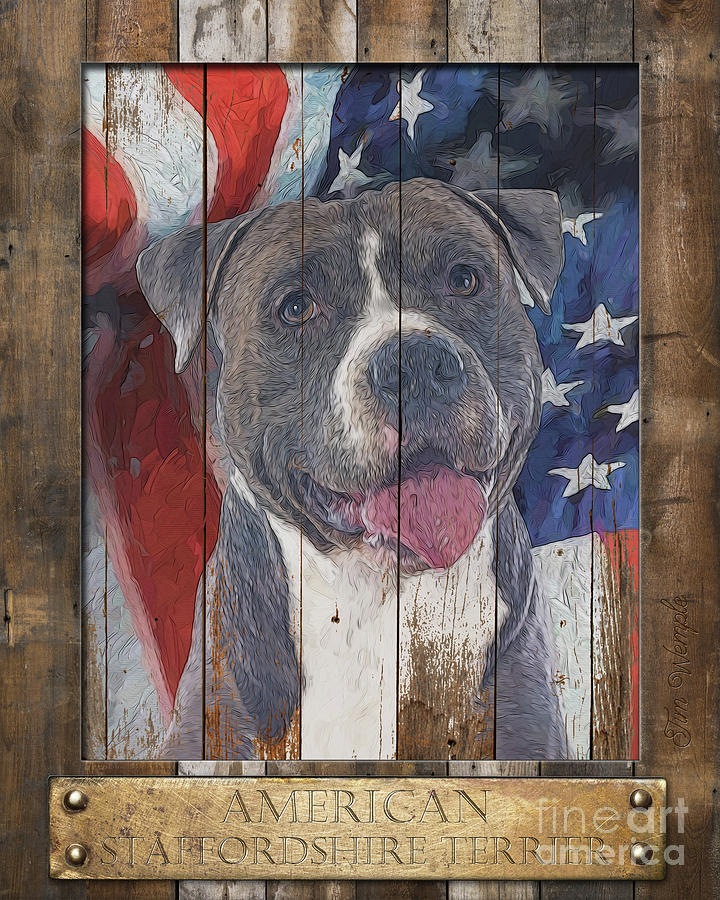 American Digital Art - American Staffordshire Terrier Flag Poster 2 by Tim Wemple