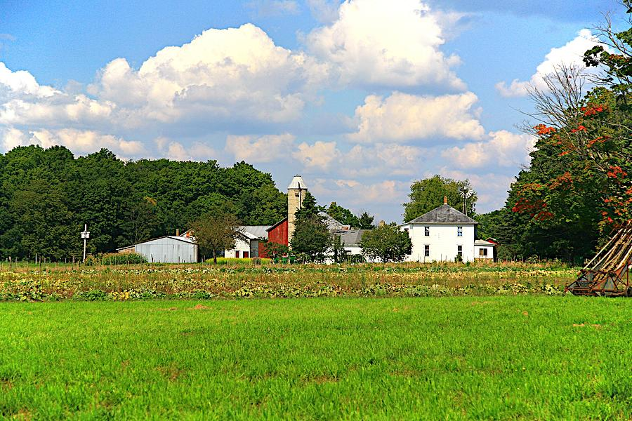 Farm Photograph - Americas Bread And Butter by Robert Pearson