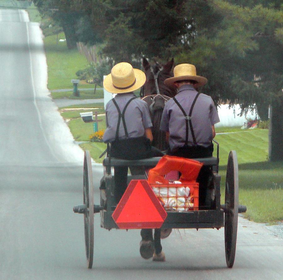Amish Photograph - Amish Boys On A Ride by Lori Seaman