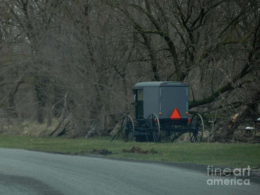 Amish Photograph - Amish Buggy Parked By A Creek by Christine Clark