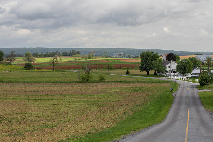 Amish Photograph - Amish Countryside by Roderick Breem