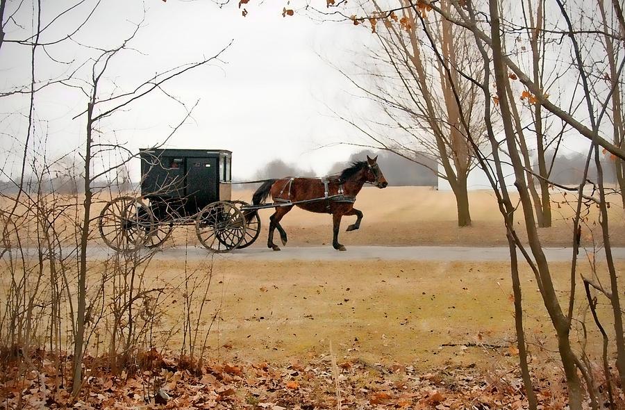 Amish Photograph - Amish Dream 1 by David Arment