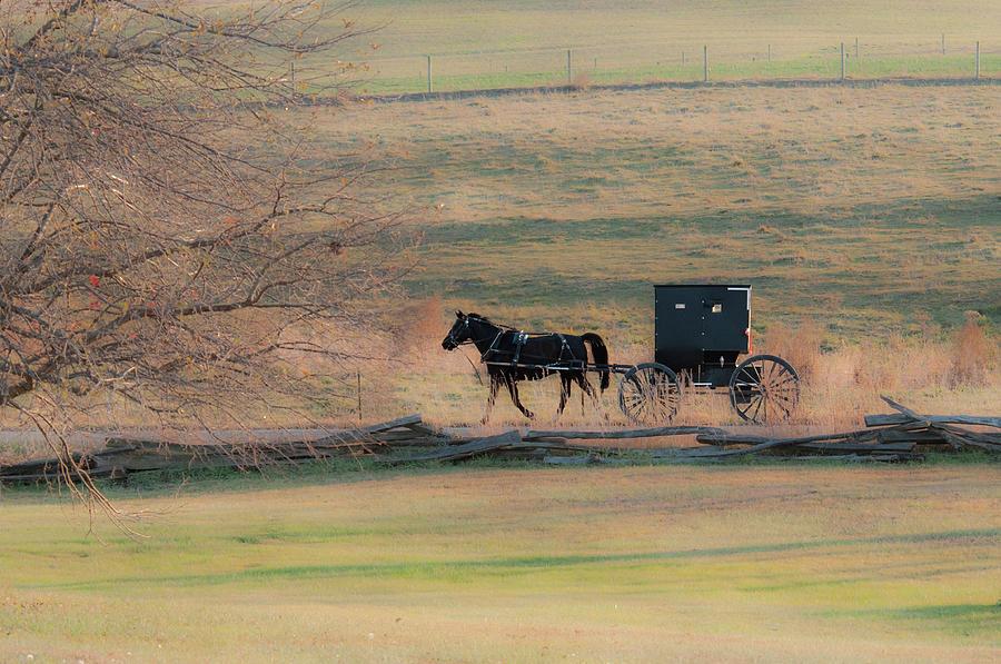 Amish Dream Photograph