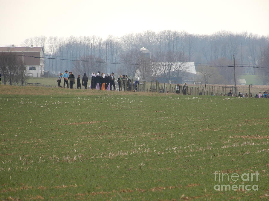 Amish Photograph - Amish Friends Gather by Christine Clark