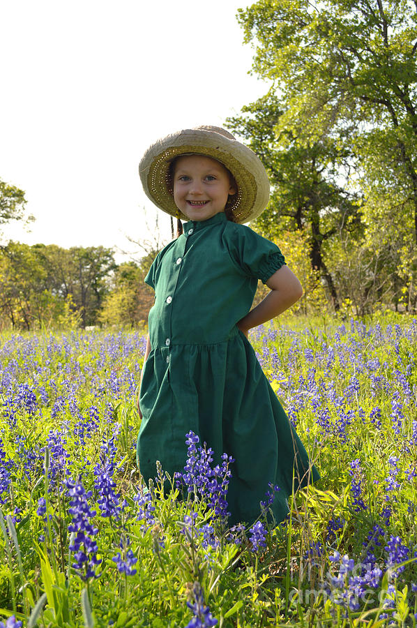 Amish Girl And Blue Bonnets I Photograph