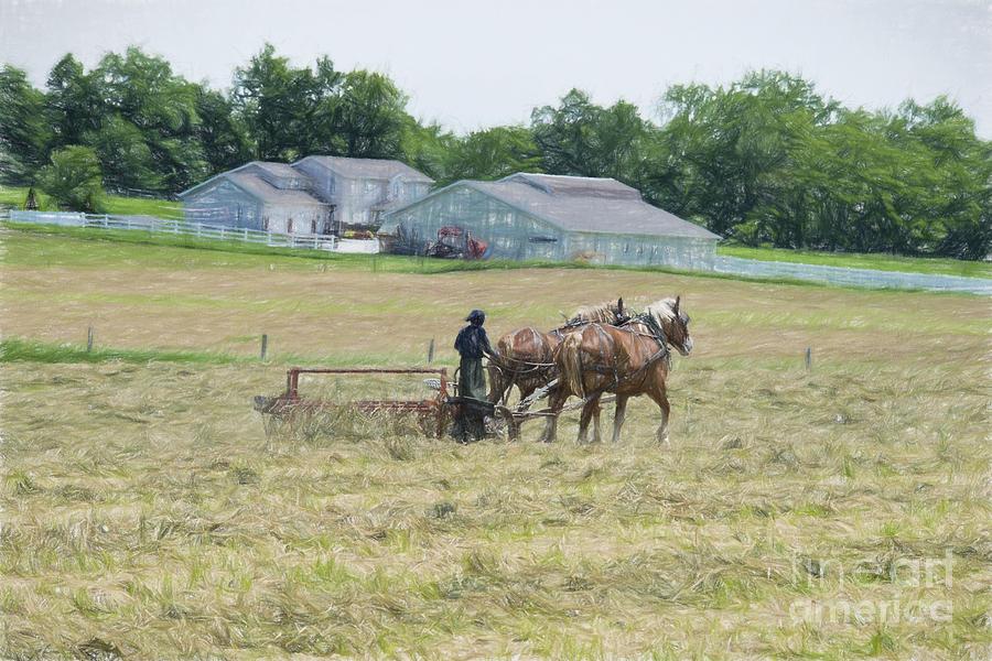Amish Photograph - Amish Girl Raking Hay As Painting by David Arment
