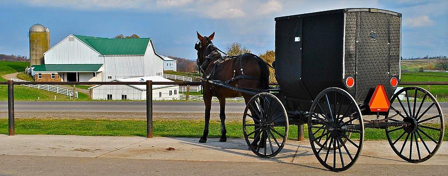 Amish Horse Buggy and Farm Photograph by Frozen in Time Fine ...