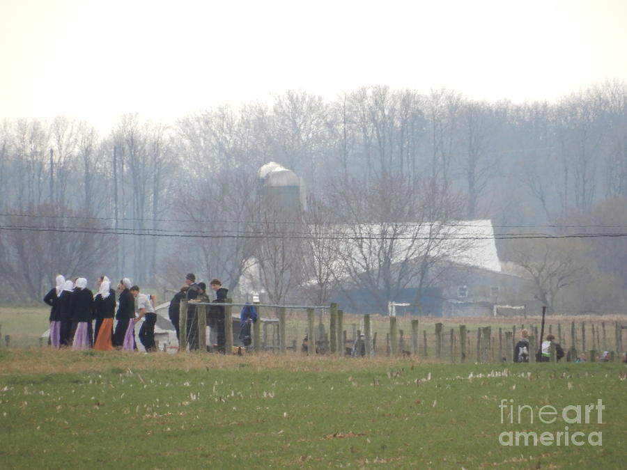 Amish Photograph - Amish Youth Gather After A Volleyball Game by Christine Clark