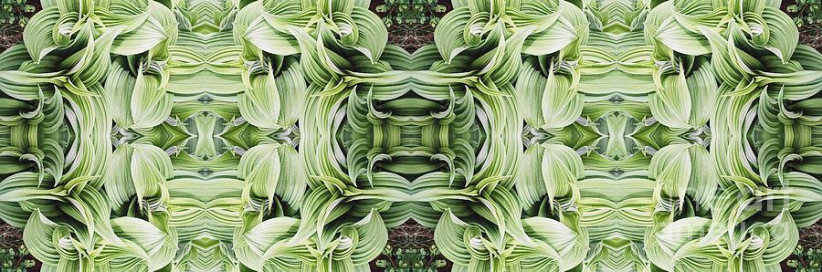 Plant Photograph - Ammonoosuc Green by Larry Davis Custom Photography