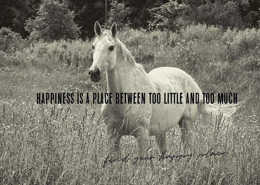 Horse Photograph - Among The Daisies Quote by JAMART Photography