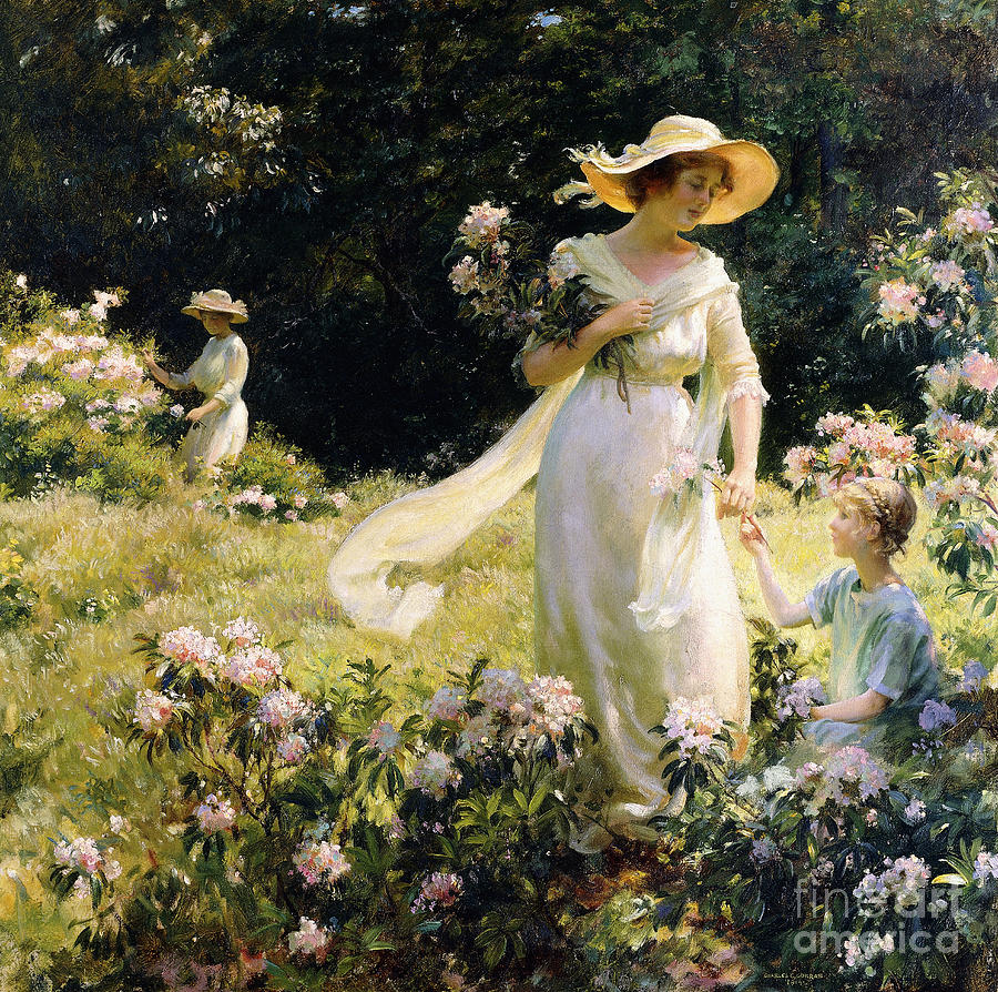 Blossom Painting - Among The Laurel Blossoms by Charles Courtney Curran