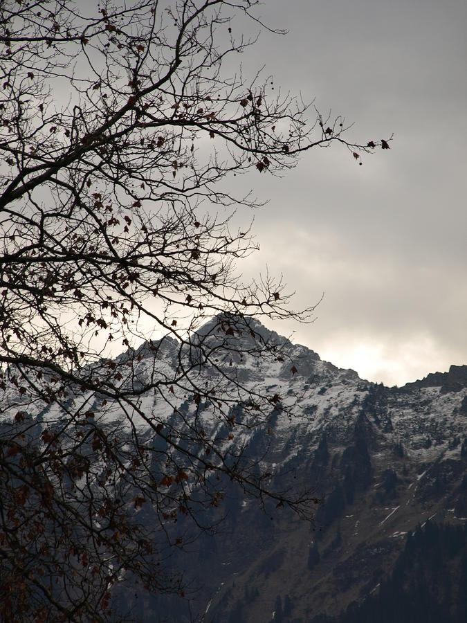 Mountain Photograph - An Alp by Randall Slinkard