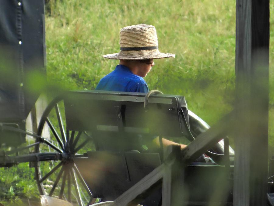 An Amish Boy's Profile by Jenny Regan