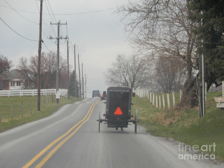 Amish Photograph - An Amish Buggy In April by Christine Clark