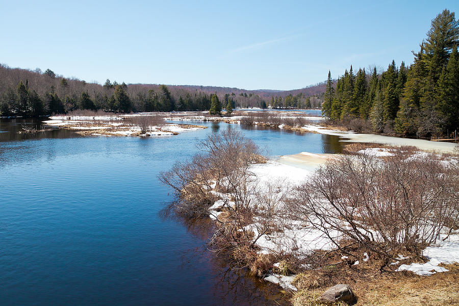 An April Afternoon On The Moose River Photograph