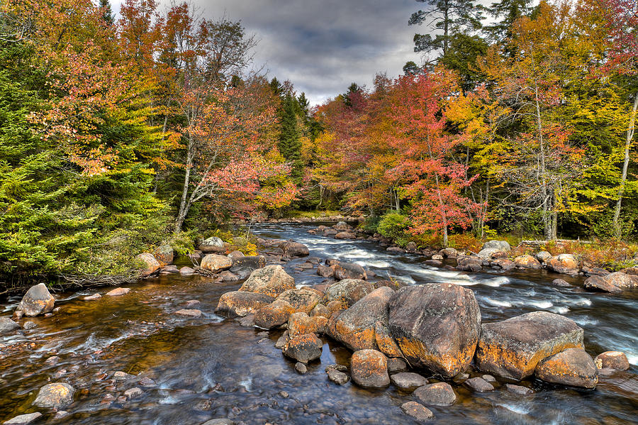 An Autumn Afternoon On The Moose River Photograph