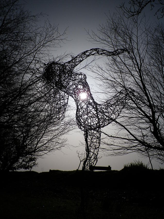 Wire Photograph - An Eclipse Of The Heart? by Richard Brookes