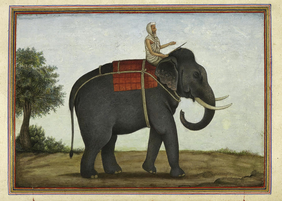 An Elephant Keeper Riding His Elephant - 1825 Drawing