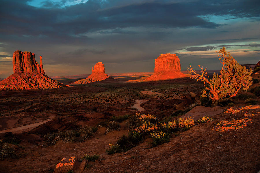 An Incredible Evening by Doug Scrima